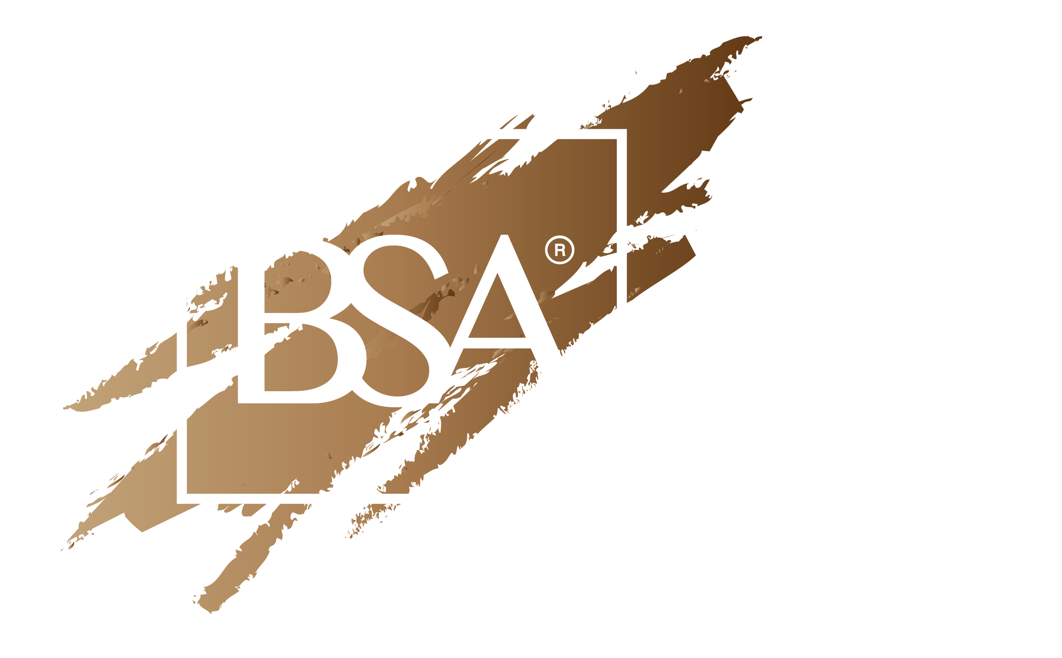 Branding Support Asia
